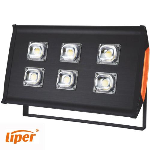 תאורת הצפה עדשה LPFL300F02