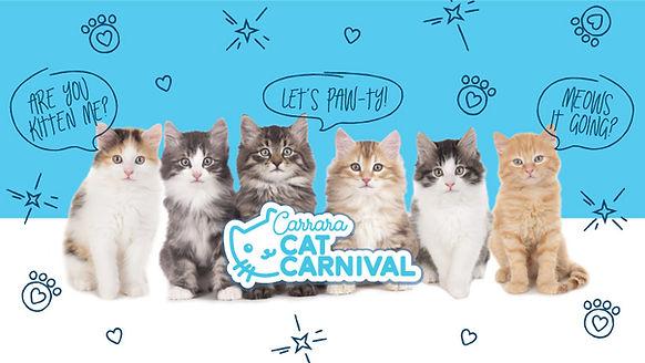 catcarnival_facebookbanner.jpg
