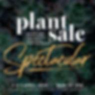 plantsale_websitesquare_web.jpg