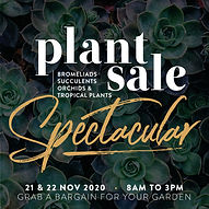 plantsale-websitesquare-november-web.jpg