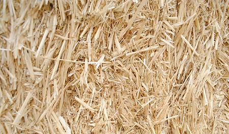 paja picada cereales alta presión profopal deshidratacion de forrajes