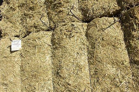 racion unica pacon vacas secas v11 profopal deshidratacion de forrajes