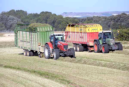 carros recogiendo alfalfa, profopal, grupo tecnipec