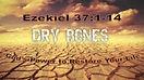 Dry Bones.jpg