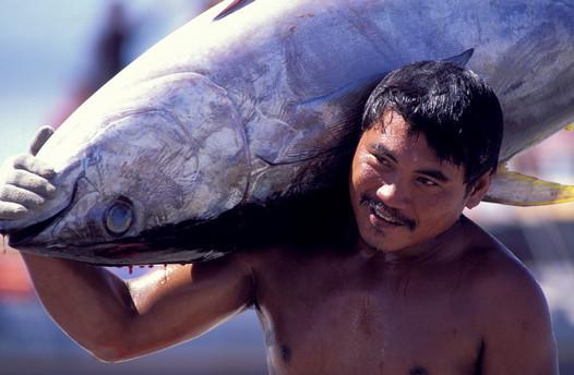 The Philippines : Tuna Treasure