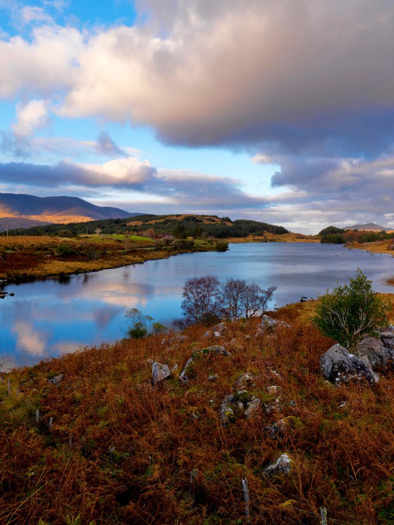 Killarney National Park_Tourism Ireland