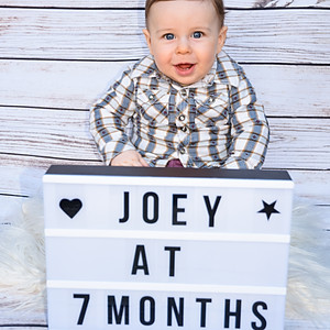 Joey at 7 months