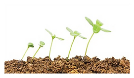 OL-benefits1-EnvironmentallyFriendly.png