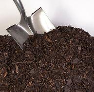 STL Compost Pine Bark Mulch