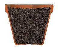 St. Louis Composting Garden Mix
