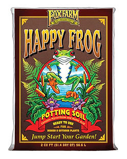 Happy Frog 001.jpg