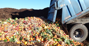 Food Program Keeps Tons of Waste Out of Local Landfills