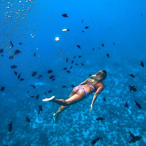 What to Expect Out of Your Mermaid Seaventures