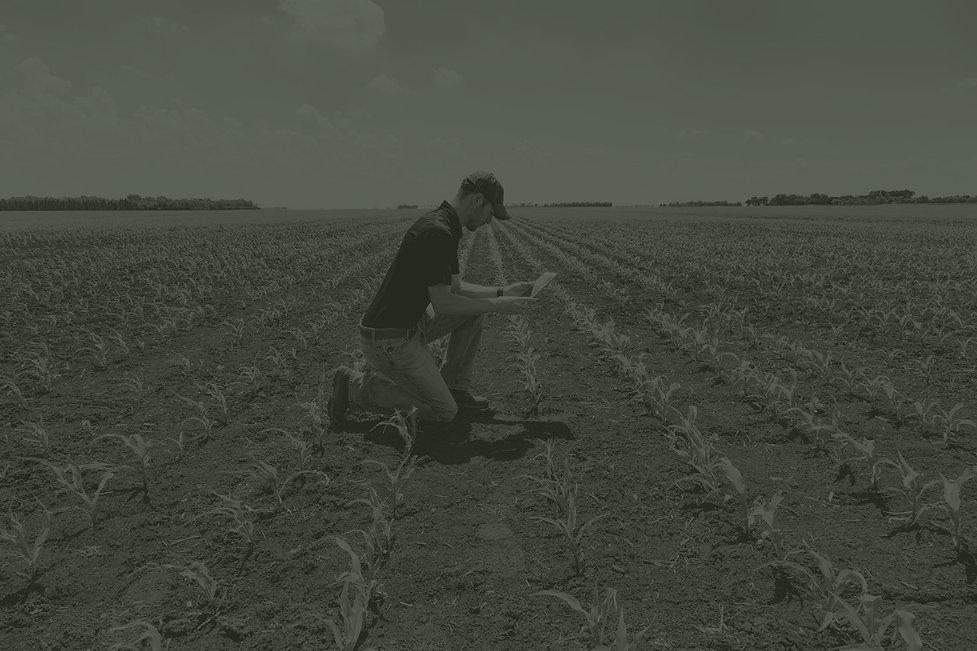 digital_farmer_duotone_web.jpg