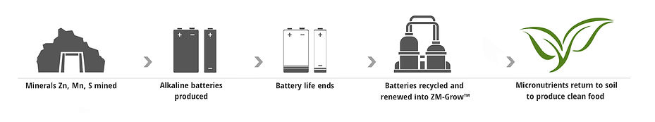 rn-circle-of-batteries.jpg