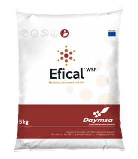 efical_5kg-261x300.png