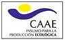 CAAE copy.png