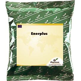 enerplus-1-1-300x300.png