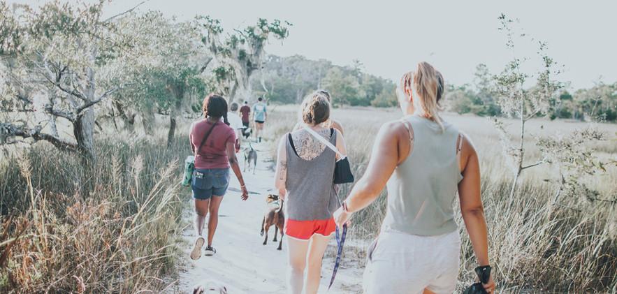 packwalk-8.jpg