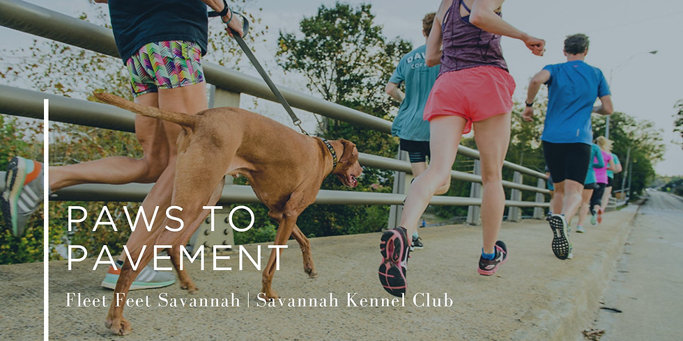 Walking Wednesdays / Paws to Pavement