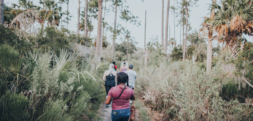 packwalk-5.jpg