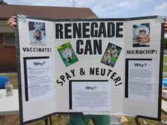 RenegadeCAN3.jpg
