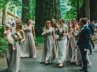 Stephanie's Nevada City, Ca. Redwood Wedding