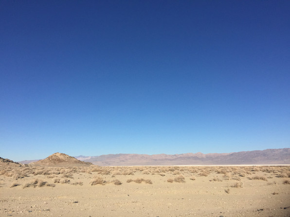 The Desert in Nevada