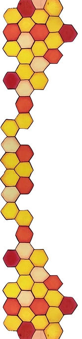 honeycomb for label (1)_edited.jpg