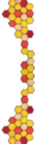honeycomb%2520for%2520label%2520(1)_edit