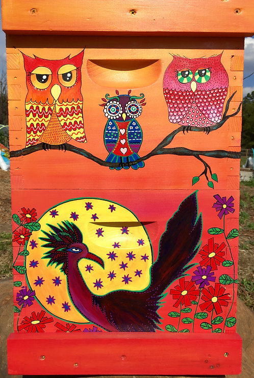 Road Runner & Wise Old Owls Set