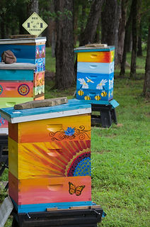 Hand crafted beehives.  Unique beehive designs. Painted beehives.  Beehives that are works of art.  The most beautiful beehives.  Painted Beehive. Most popular beehives on the internet.