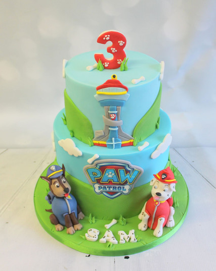 Paw Patrol Cake 2 tiers with models