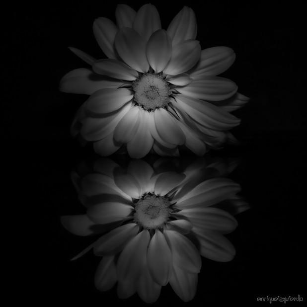 _MG_3695-Editar.jpg