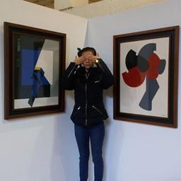 Exposicion JUlio Mario Santo Domingo