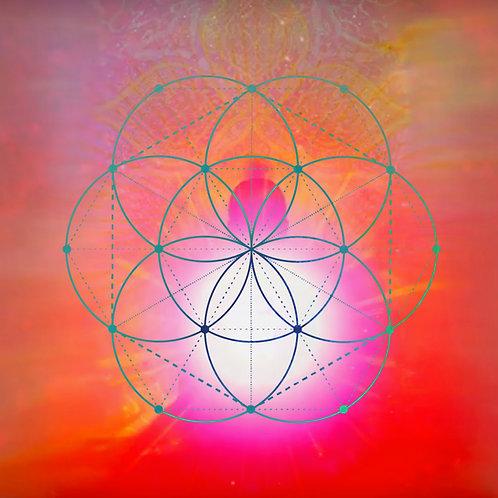 Balance Male-Female Energy || Harmonise Energy Field || Yin Yang Meditation