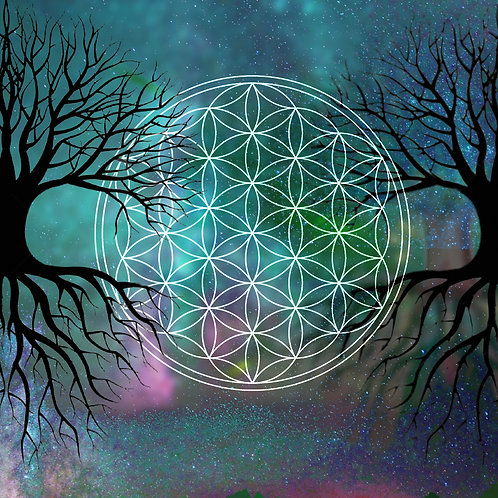The Divine TREE | Nourish WILLPOWER, Focus & Growth | Seed Magic