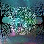 The Divine TREE _ Nourish WILLPOWER, Foc