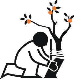 Ortho Center Logo 2.png