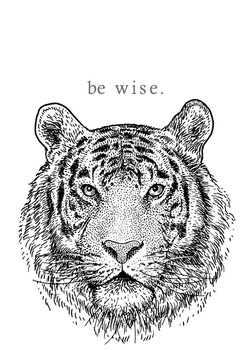 tiger - be wise