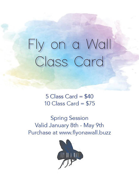 Fly on a Wall Class Card Poster.jpg