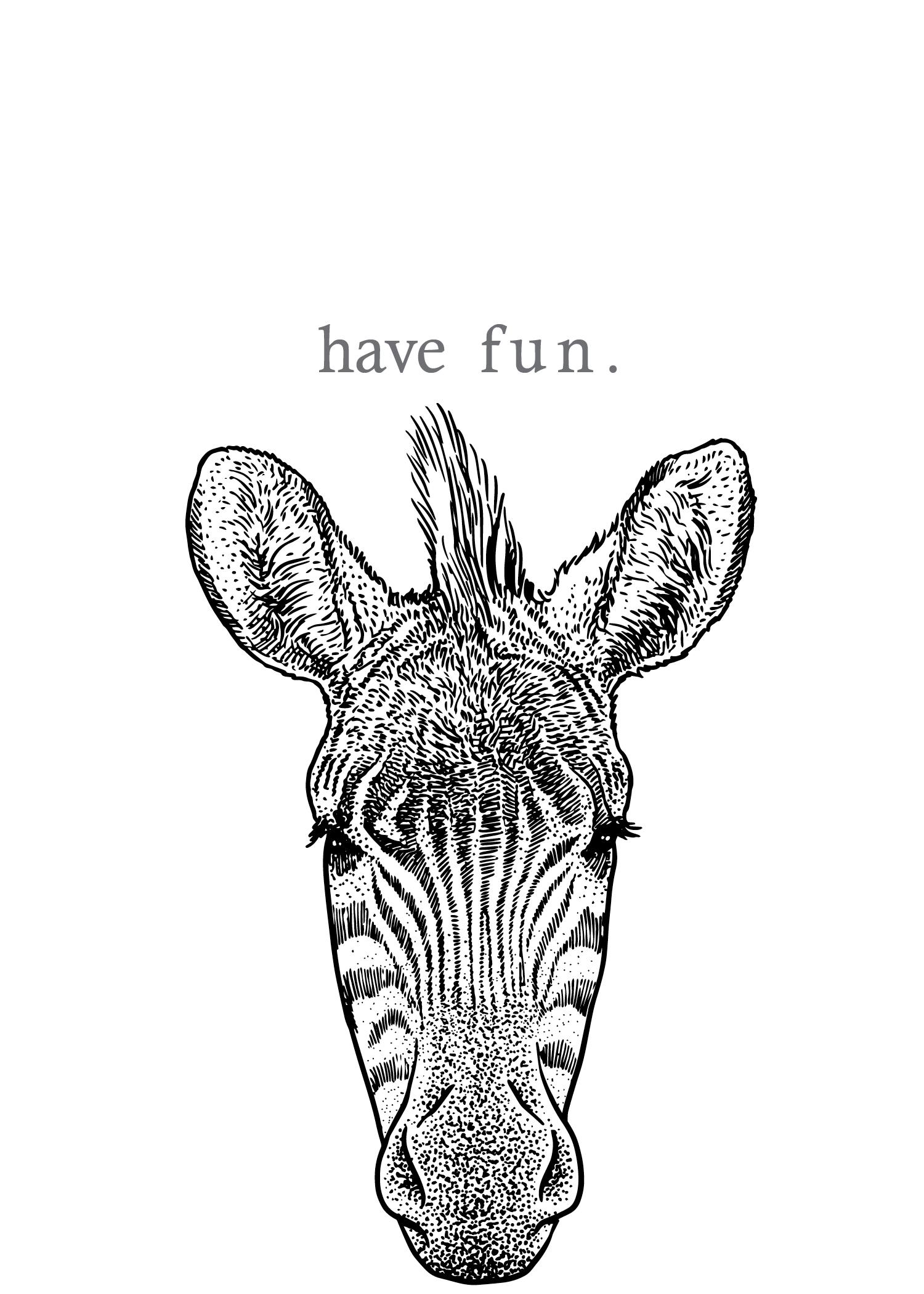 zebra - have fun