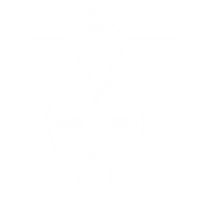Day Zero Inverted Project Symbol Larger.