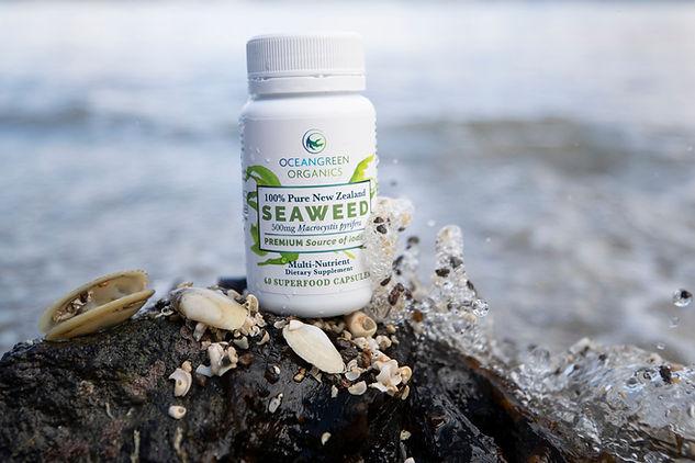 Seaweed Products on Beach15.jpg