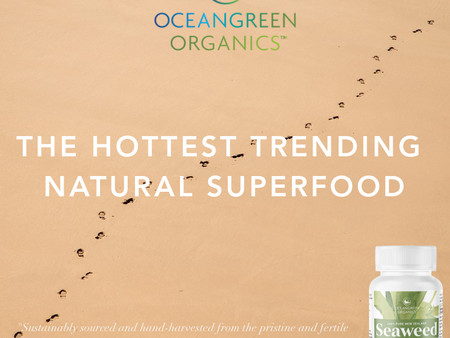 Oceangreen Organics' Seaweed Supplements making waves in extraordinary health and wellness support!