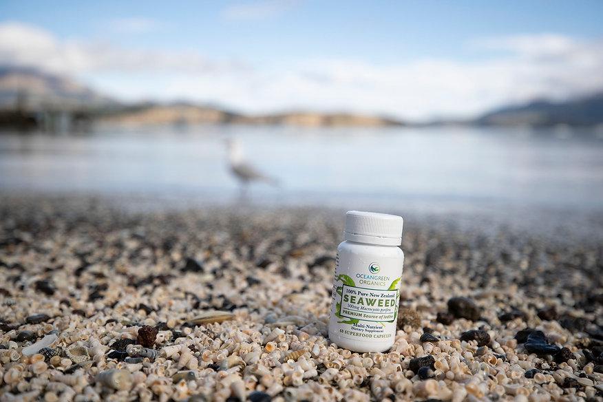Seaweed Products on Beach32.jpg