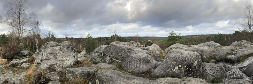 Randonnée Fontainebleau Matthieu VILLARET La Forme Créative