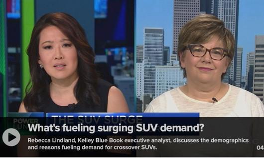 Rebecca on CNBC June 28 SUV.jpg
