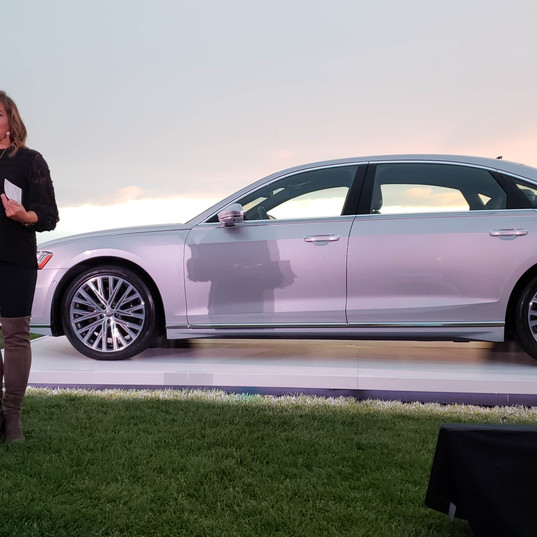 Dr. Bobinet and the 2018 Audi A8L