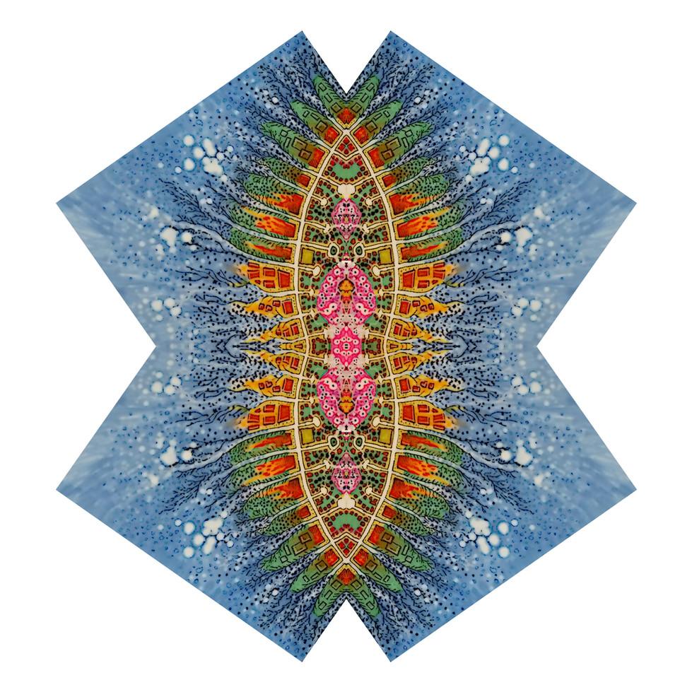 amoebas7.jpg